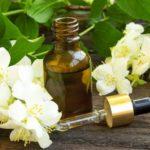 Những loại tinh dầu có hương thơm tự nhiên